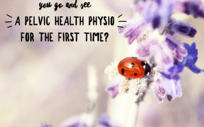 What to expect when you see a pelvic health physiotherapist